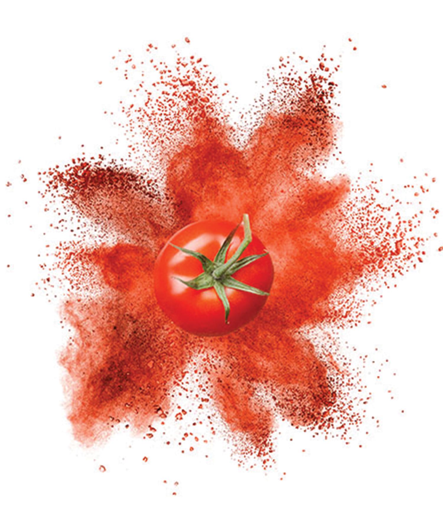 Hot Break Tomato Powder